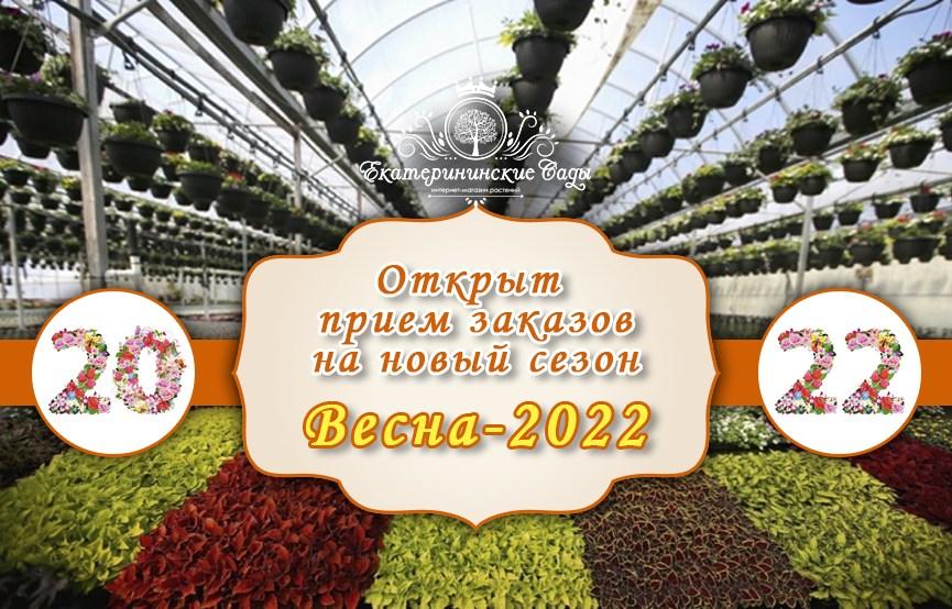 открыт прием заказов на сезон весна 2022
